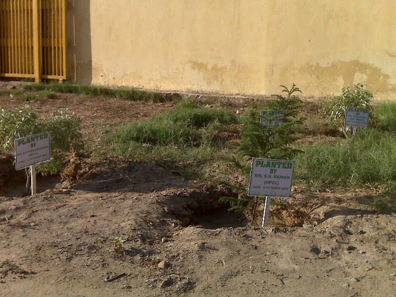 Supporting Greenery by planting trees